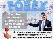 Руководство forex для начинающих english learning centre limassol