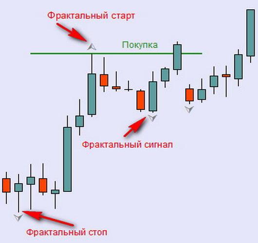 Фрактальная структура рынка форекс forexmt4systems cycle ex4
