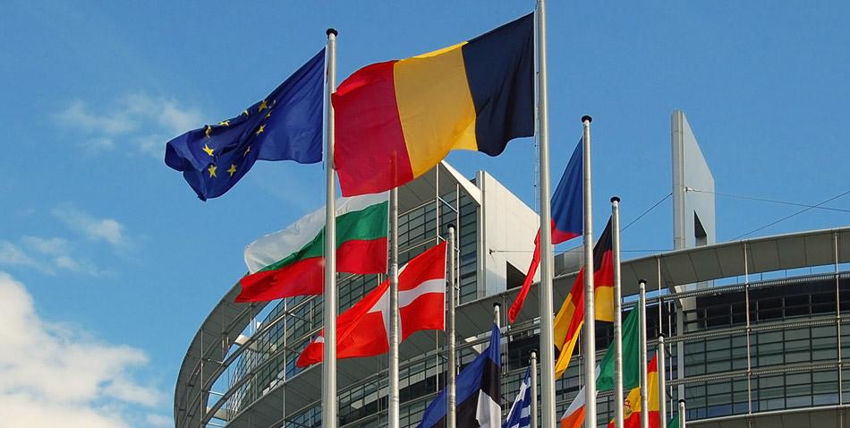 Европейские форекс трейдеры партнер по бинарным опционам